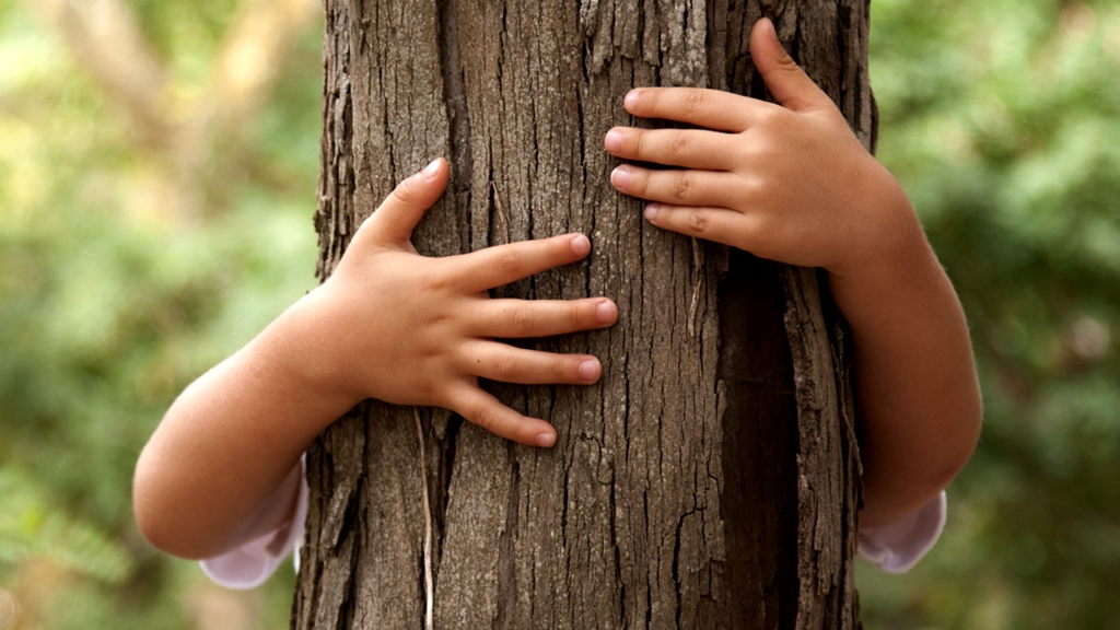 Arms hugging a tree - Sustainable growth - AAK