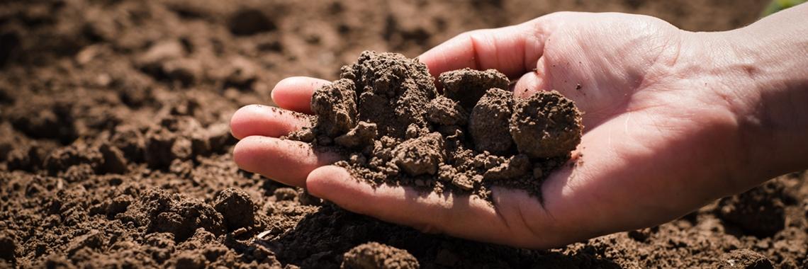 Hand som håller odlingsjord - Technical products - AAK
