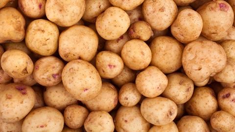 Potatisar - Technical Products - AAK