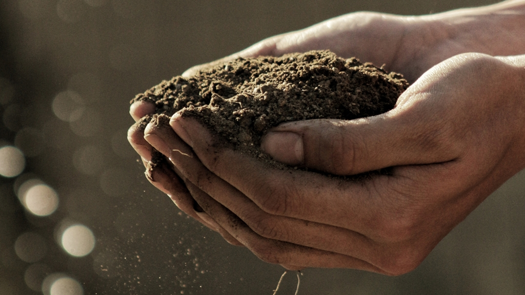 Hands holding soil - Sustainable growth - AAK