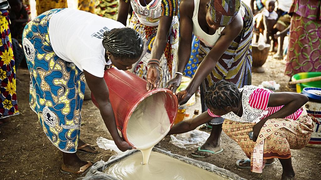 Kvinnor i Burkina Faso som häller sheakärnor i en kittel - Foder - AAK