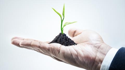 Affärsman som håller en liten växt i sin hand - Investerare - AAK