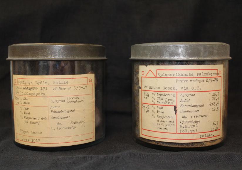 Palmekerner fra 1917 og 1928.